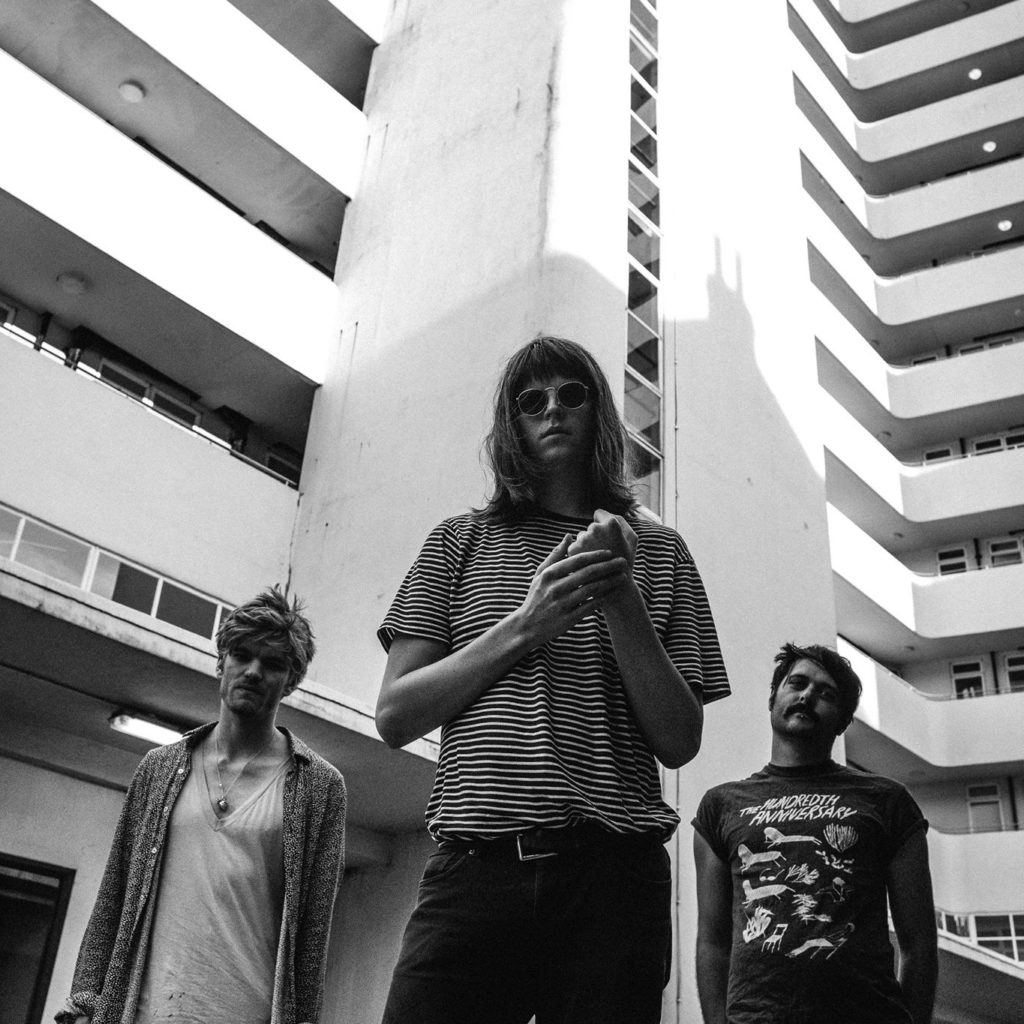 """Nieuwe single Tigercub – """"The Divided States Of Us"""""""