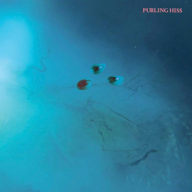 """Nieuwe single Purling Hiss – """"Fever"""""""