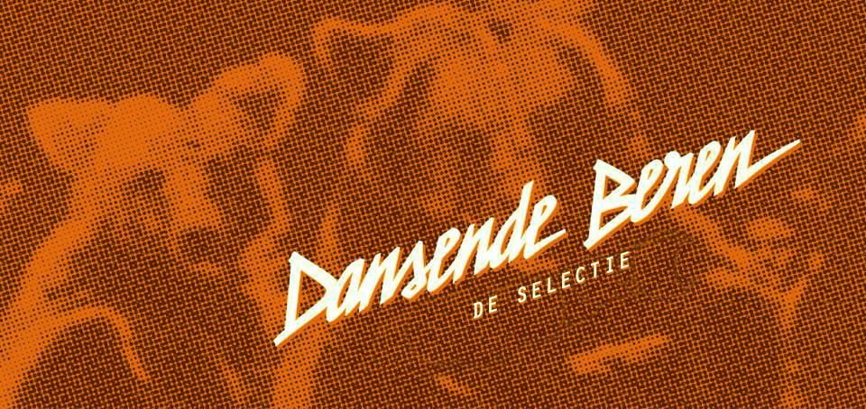 De Nederlandse selectie songs van 2016