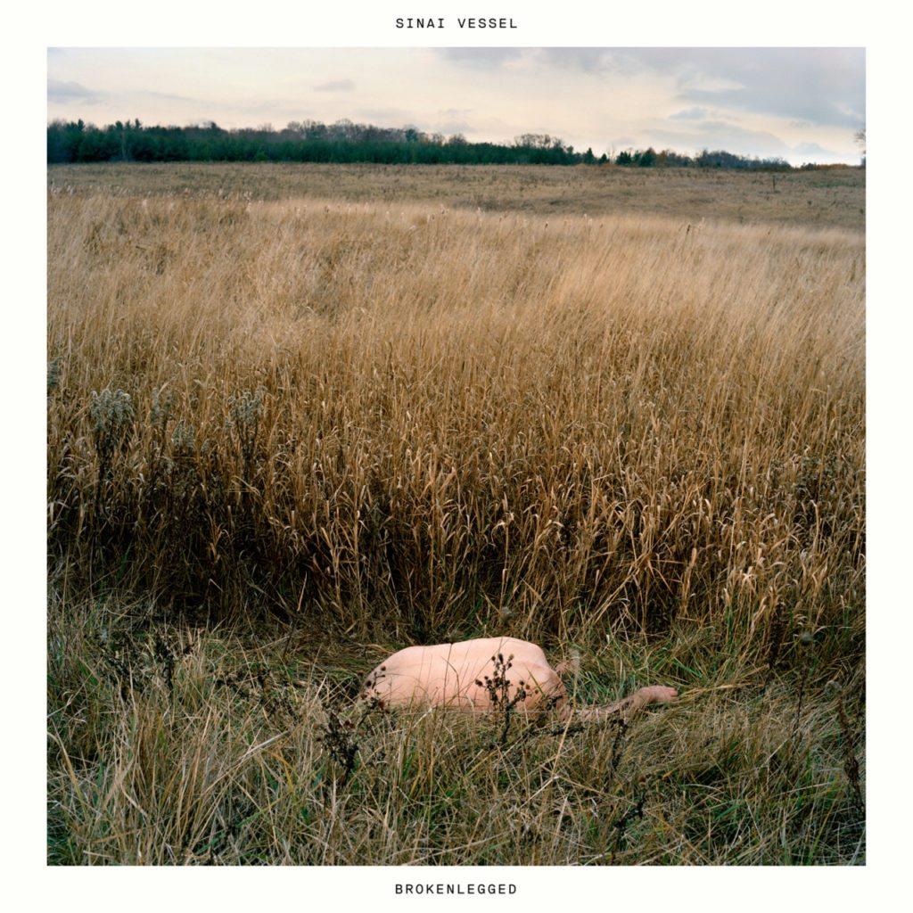 "Nieuwe single Sinai Vessel – ""Ramekin"""