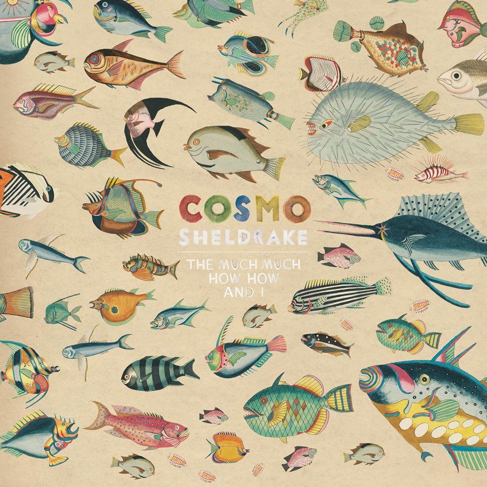 Cosmo Sheldrake – The Much Much How How And I (★★★★½): Waar uniekheid en talent samensmelten
