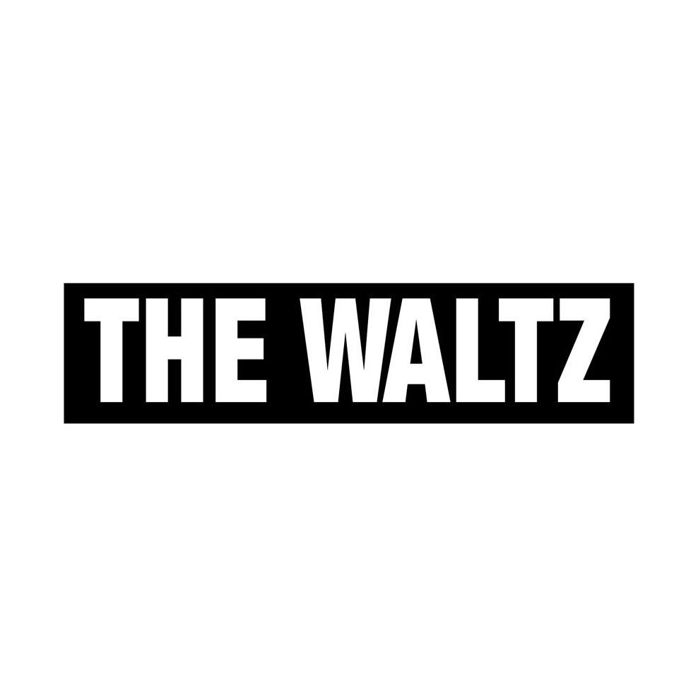 "Première: Nieuwe single ""Television"" + interview The Waltz"