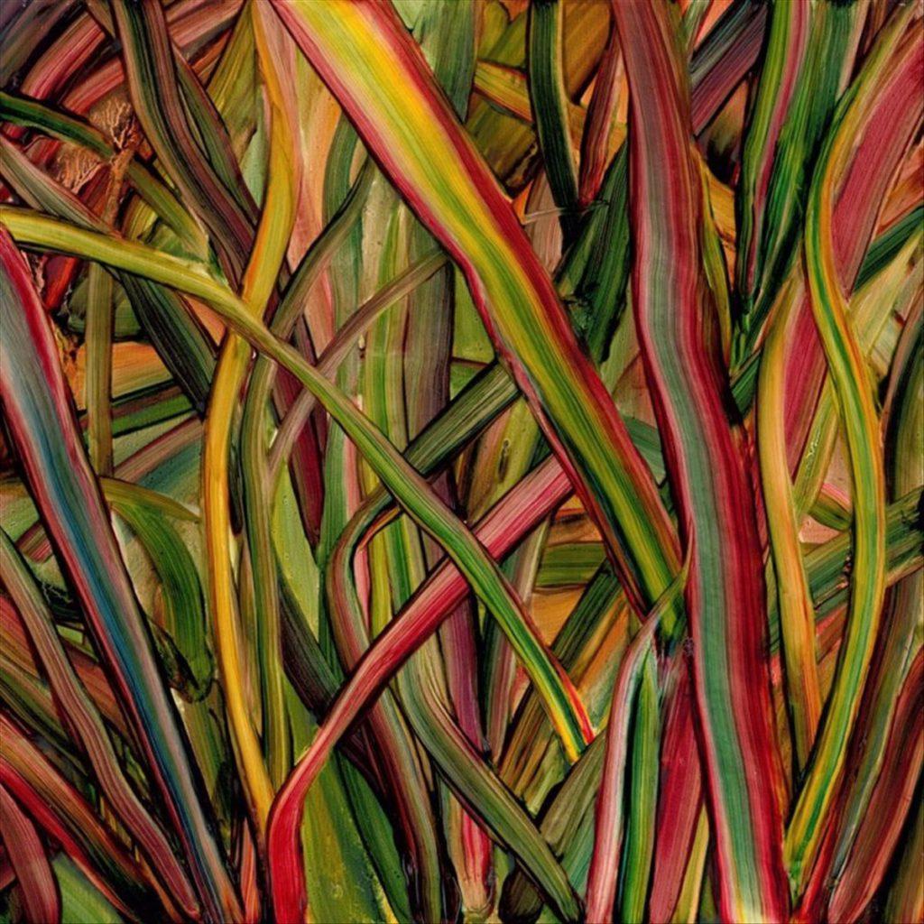 """Gengahr – Where Wildness Grows (★★★★):  """"Toegankelijke, sterke en sferische indierock"""""""