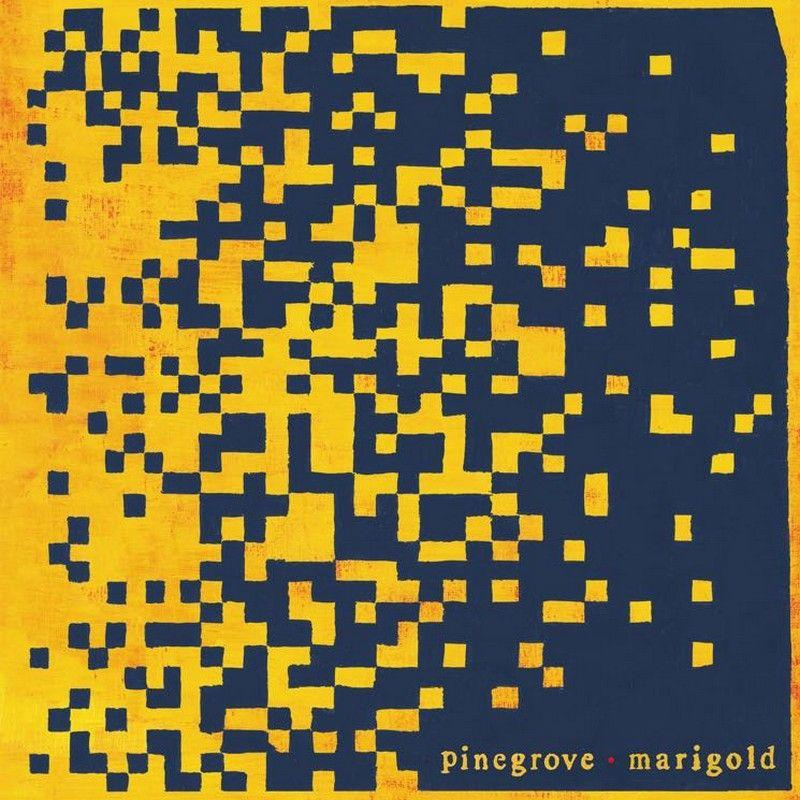 Pinegrove – Marigold (★★★½): Knus op z'n best