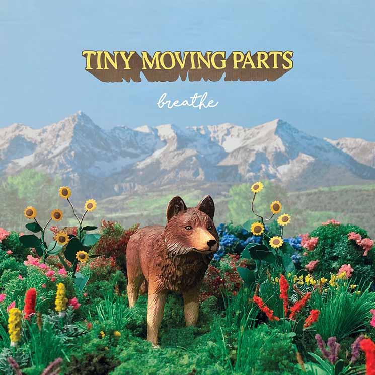 Tiny Moving Parts – breathe (★★★★): Pijnpunten ombuigen naar grootste sterkte