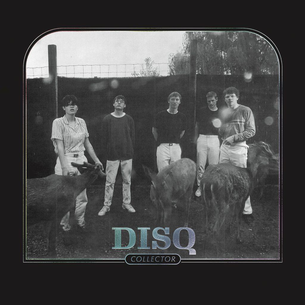 Disq – Collector (★★★★): Nonchalant, kwetsbaar, en alles daartussenin