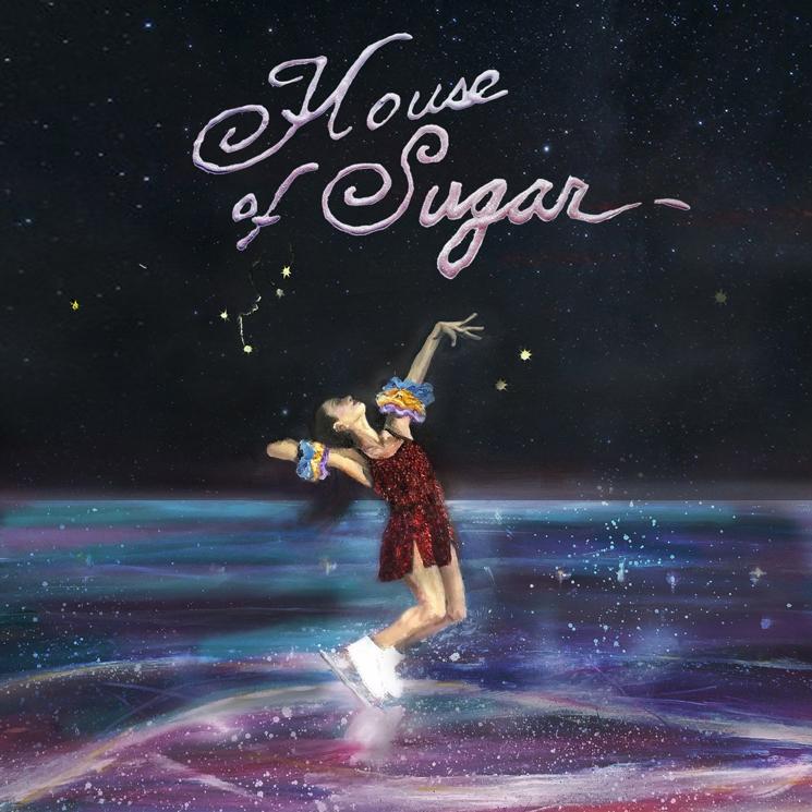 (Sandy) Alex G – House of Sugar (★★★★): Experimentele schoonheid