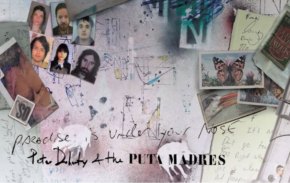 "Nieuwe single Pete Doherty & The Puta Madres – ""Paradise Is Under Your Nose"""