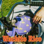 boy pablo – Wachito Rico (★★½): Liefde en overvloedige synths